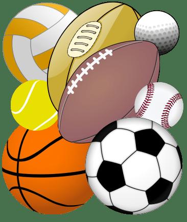 Sprzęt sportowy